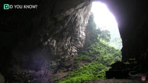 Hang Son Doonq Cave video