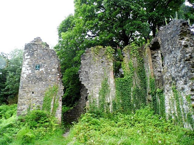 Overgrown castle ruin