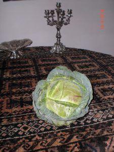 Organic grown green cabbage