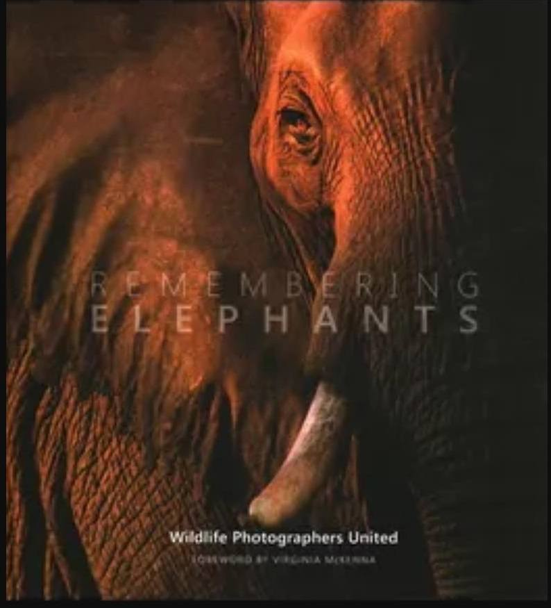Remembering Elephants