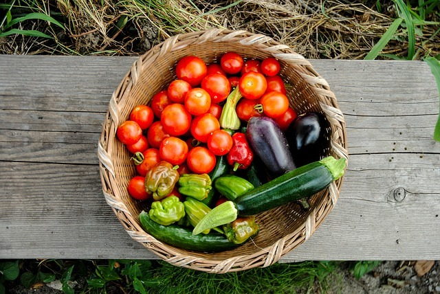 Harvest from your organic garden