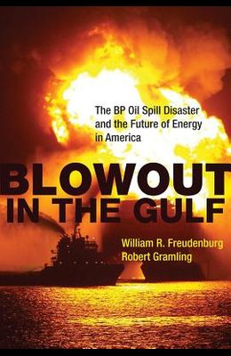 The BP Oil Spill Disaster and the Future of Energy in America