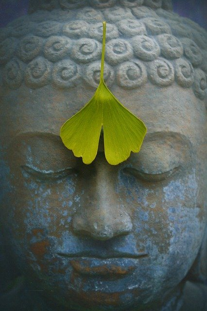 Lovely Buddha head