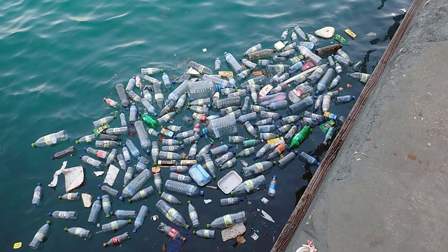 Plastic bottles floating in the harbor