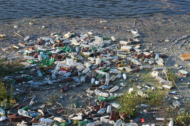 Bottles polluting the beach