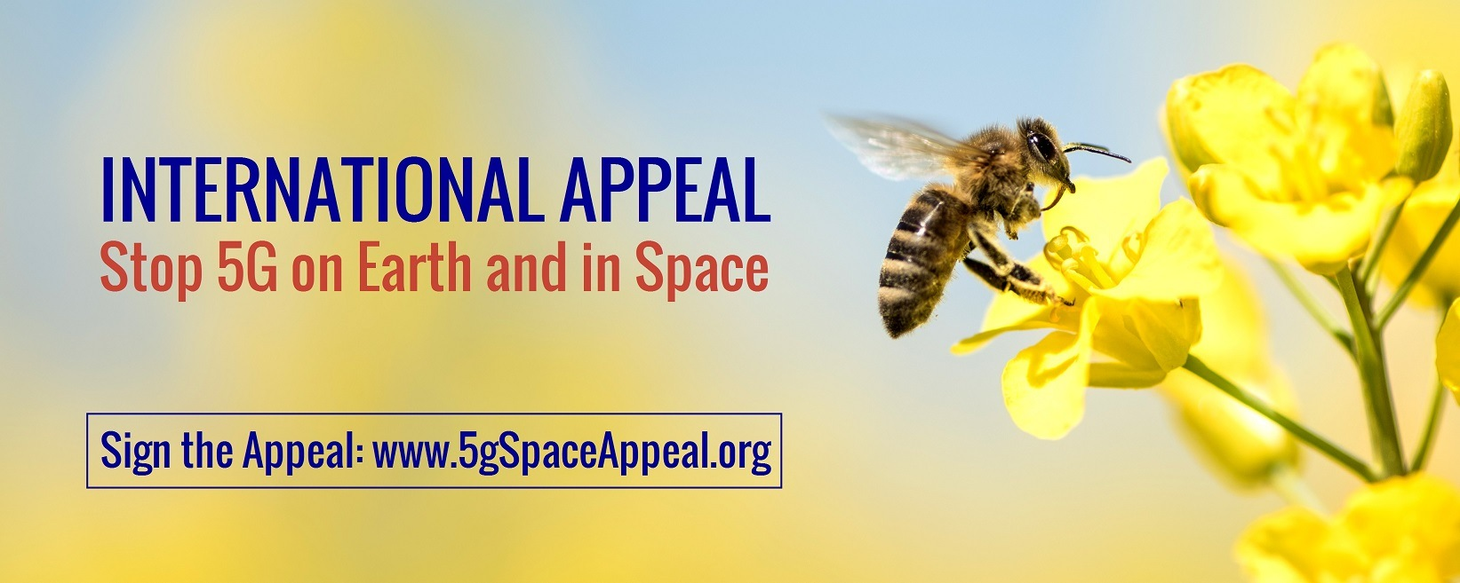 5G Space Appeal